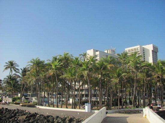 Caribe Hilton San Juan: The Hilton -Caribe