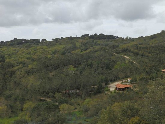 Iberian Wolf Recovery Centre: The centre from a viewing tower