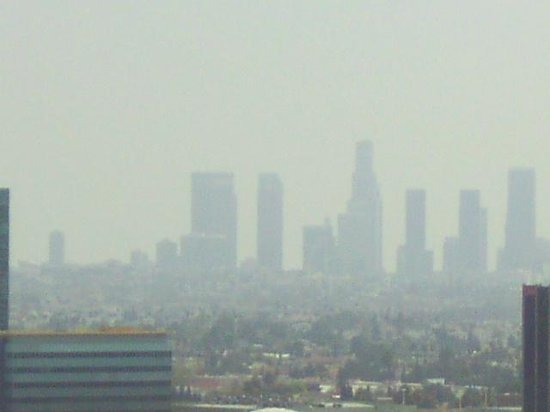 Hollywood Hills Hotel : City view through the fog