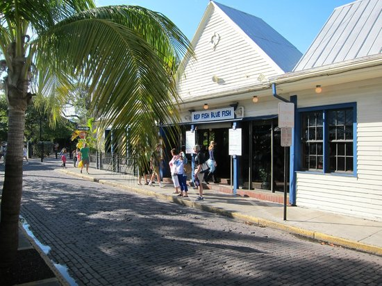 Out front picture of red fish blue fish key west for Red fish blue fish key west