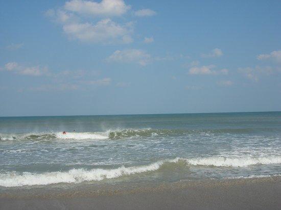 Hilton Cocoa Beach Oceanfront : Walk on the beach
