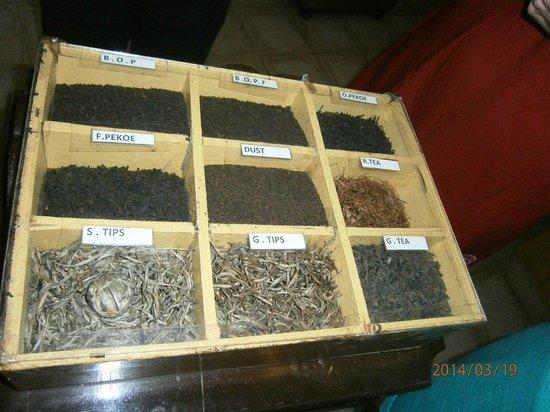 Hotel Hibiscus Beach: на чайной фабрике