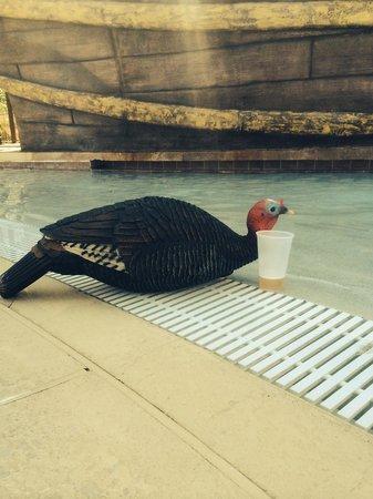 Lake Buena Vista Resort Village & Spa : Loosen up!