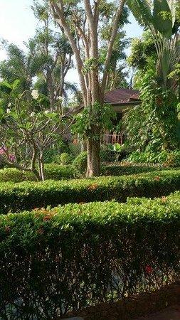 Samed Villa Resort: отель