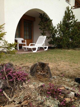 Apart- und Kinderhotel Muchetta: giardino