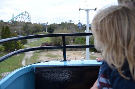 Busch Gardens: On the sky ride