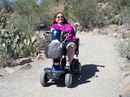 Museo del Desierto Arizona-Sonora: Desert Driving