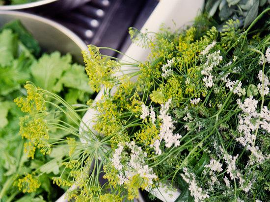 La Pulperia: herbes