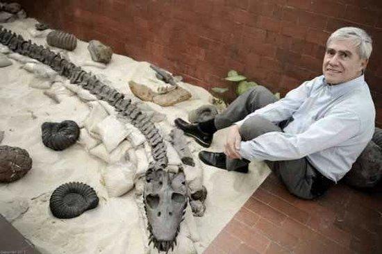 Centro de Investigaciones Paleontologicas - CIP