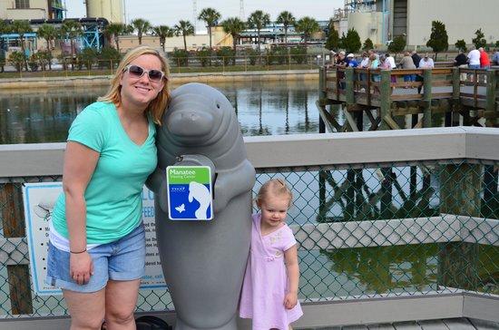 Tampa Electric Manatee Viewing Center: Us