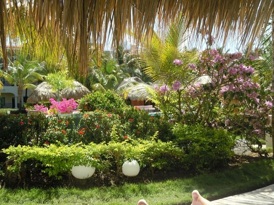 The Reserve at Paradisus Punta Cana: view from poolside cabana