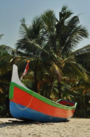 Marari Beach: рыбацкие лодки