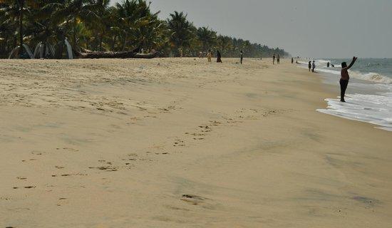 Marari Beach: не очень много народу