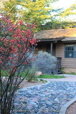 L'Auberge de Sedona : Outside of Cottages