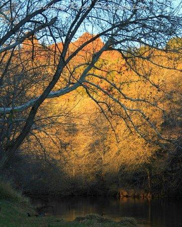 L'Auberge de Sedona: Looking towards the Red Rocks