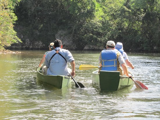 Crystal Paradise Resort : birding and canoeing