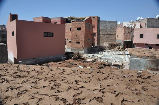 Tanneries: Tannery