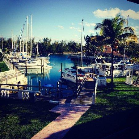 Ocean Reef Yacht Club & Resort: View from my Bedroom