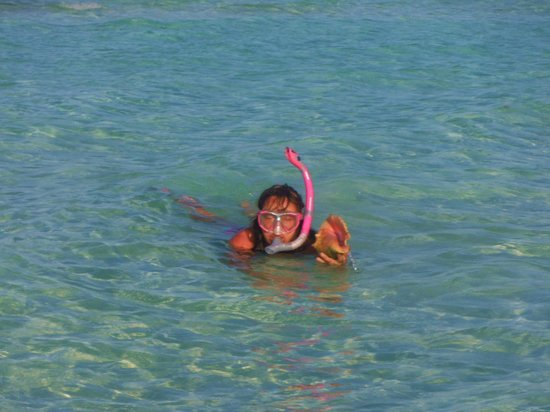 Sol Cayo Guillermo: snorkeling on the beach