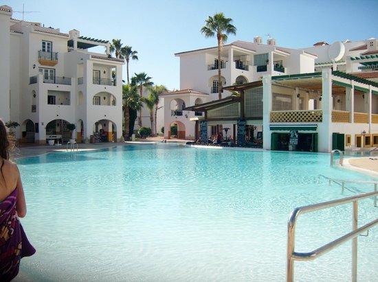 Sunset Harbour Club : Bottom Pool area