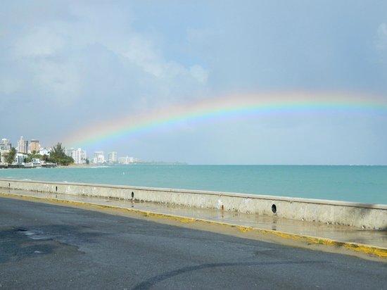 Tres Palmas Inn: Walk along the beach
