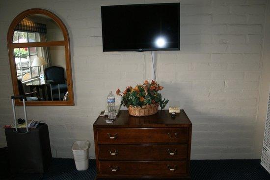 Carmel Village Inn: Television in the room