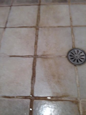 Hotel Tamarindo Diria: Shower floors need to be cleaned and regrouted.