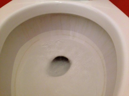 Hotel Tamarindo Diria : dirty toilet
