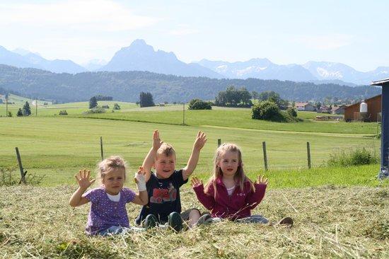 Kinderferienhof Bergblick: unsere Aussicht
