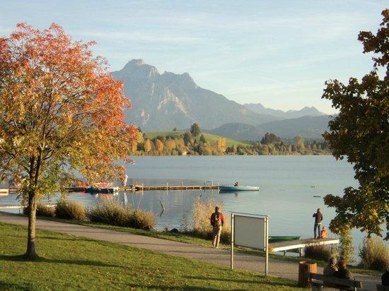 Kinderferienhof Bergblick: Hopfensee