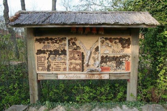 Rhododendronpark Bremen: Insektenhotel
