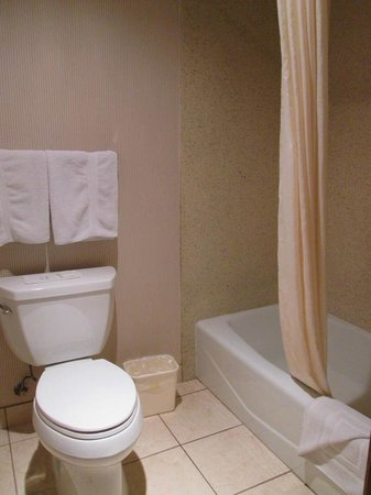 Best Western Plus Redondo Beach Inn: bathroom