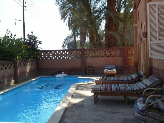 Villa al-diwan: piscine