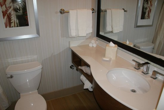 Hilton Garden Inn Los Angeles/Hollywood: Bathroom.