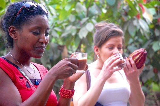 Churute Mangroves Ecological Reserve: Desgustacion de cacao, Monoloco, Churute
