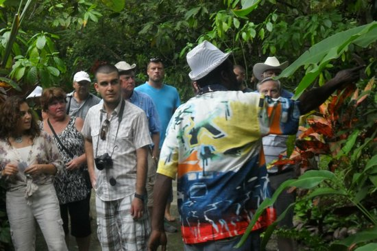 Solomon Water Taxi & Tours: best tour guide at the botanical gardens