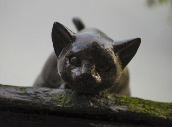 York Cat Trail: CAt at the Three Tuns