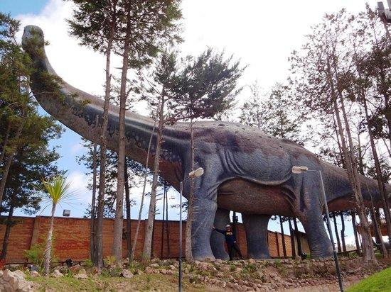 Cretaceous Park: visual2
