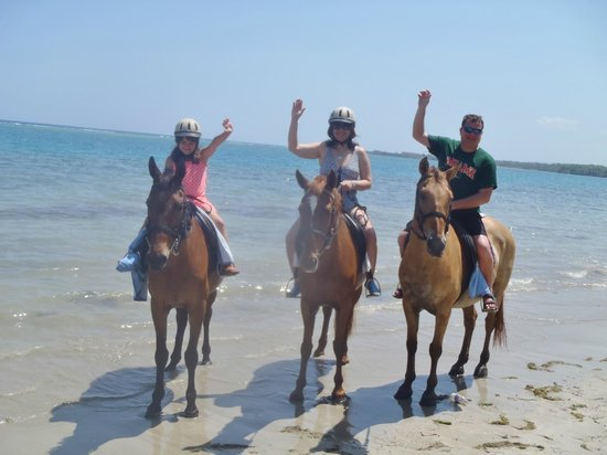 Hooves - Guided tours on horseback: A photo op on the Beach..