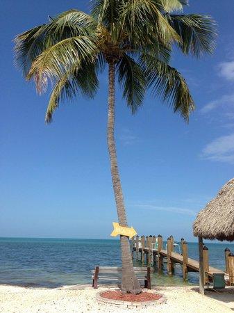 Edgewater Lodge: Beach