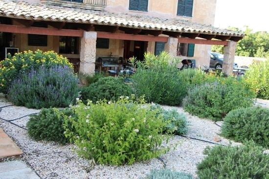 la terrasse couverte - Bild von Moli de Sal Mallorca, Campos ...
