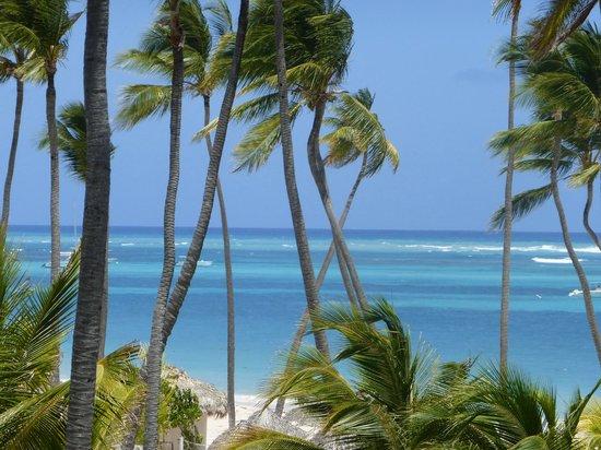 Paradisus Palma Real Golf & Spa Resort: Vista apto 3092