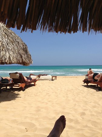 Excellence Punta Cana: Great Beach