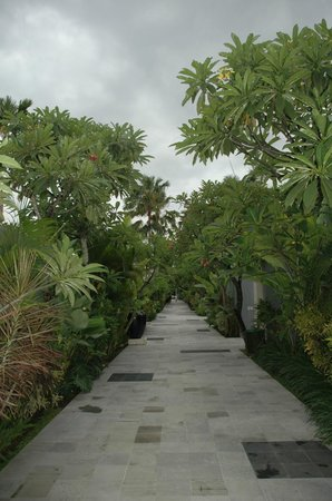 The Seminyak Suite Private Villa : nice walk to you room