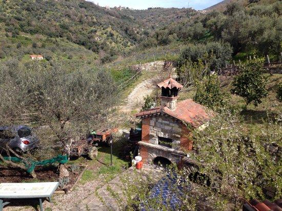 Agriturismo Il Mulino: Forno a legna