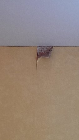 The Royal Hotel and Merrill Leisure Club: peeling, damp walls