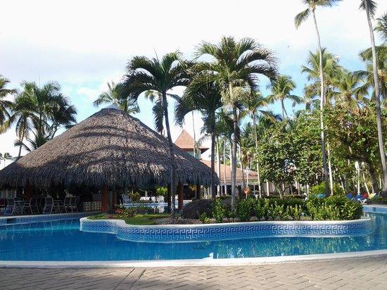 Vista Sol Punta Cana: the bar pool