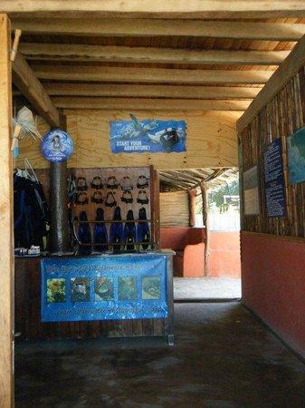 The Carlo Scuba Dive shop