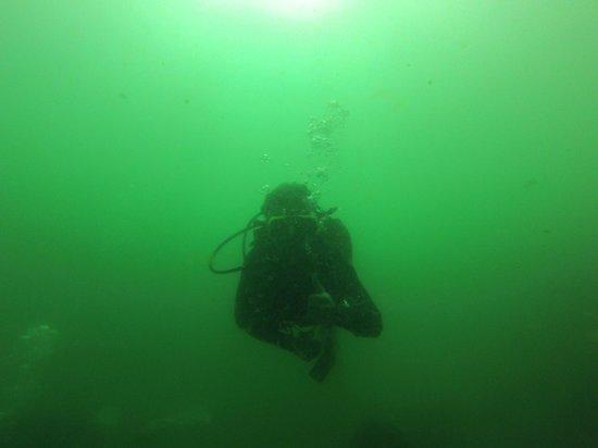 Ati Divers: Underwater