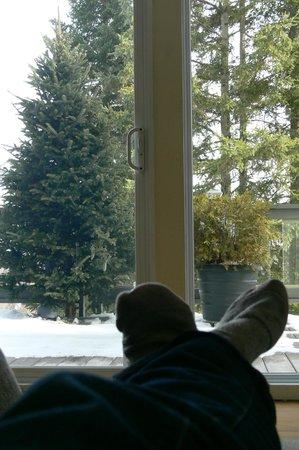 Villa Côté Sud: Awww, relaxing.